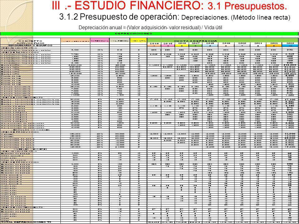 III .- ESTUDIO FINANCIERO: 3.1 Presupuestos.