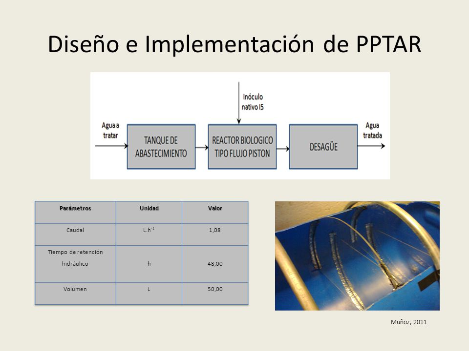 Diseño e Implementación de PPTAR
