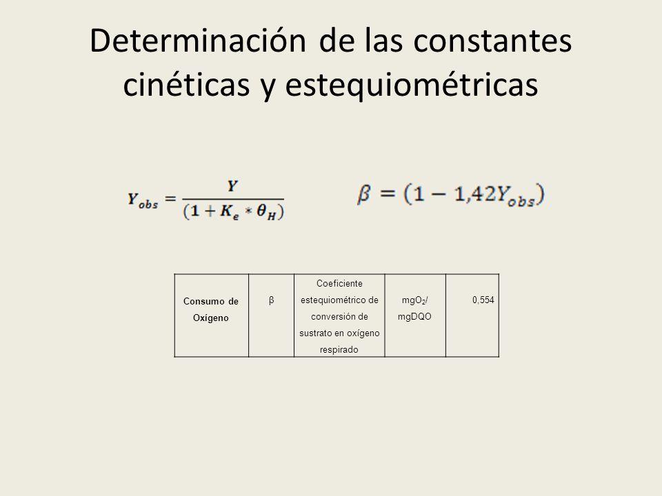 Determinación de las constantes cinéticas y estequiométricas