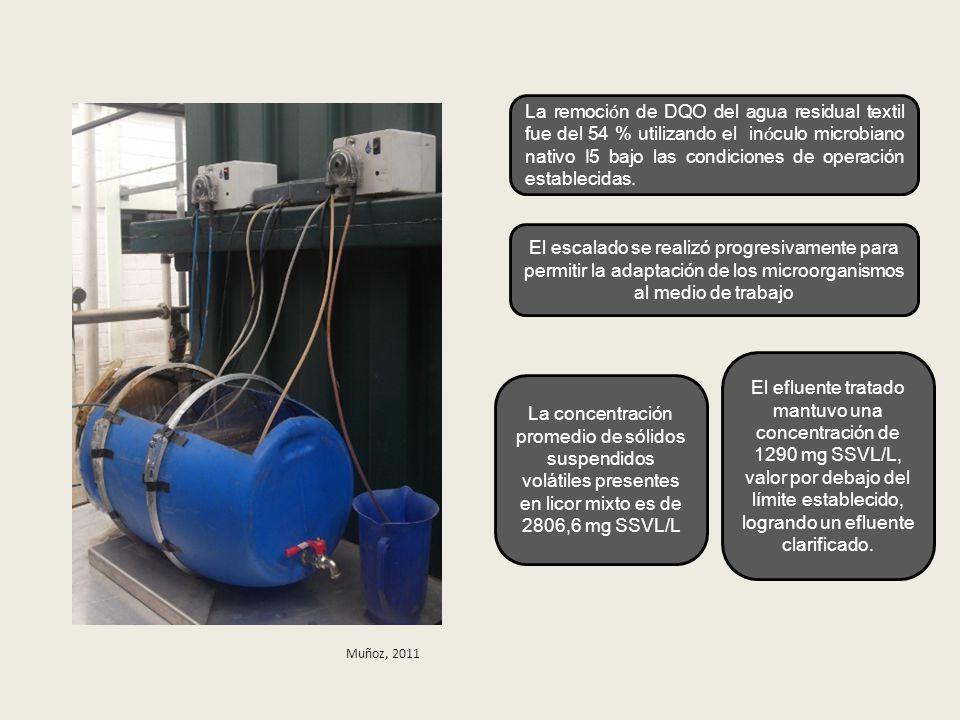 La remoción de DQO del agua residual textil fue del 54 % utilizando el inóculo microbiano nativo I5 bajo las condiciones de operación establecidas.