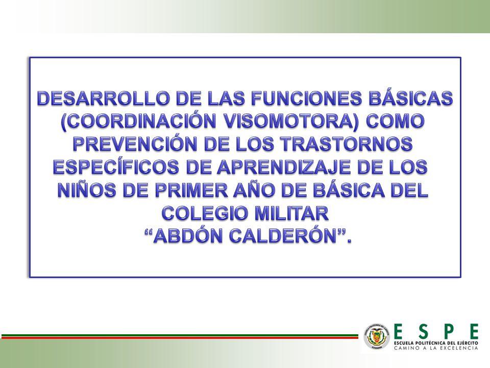 DESARROLLO DE LAS FUNCIONES BÁSICAS (COORDINACIÓN VISOMOTORA) COMO