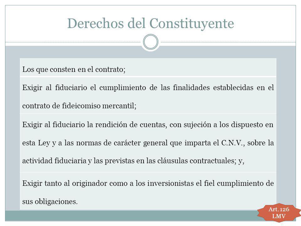 Derechos del Constituyente