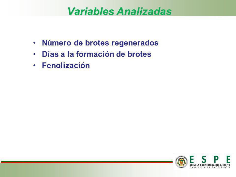 Variables Analizadas Número de brotes regenerados