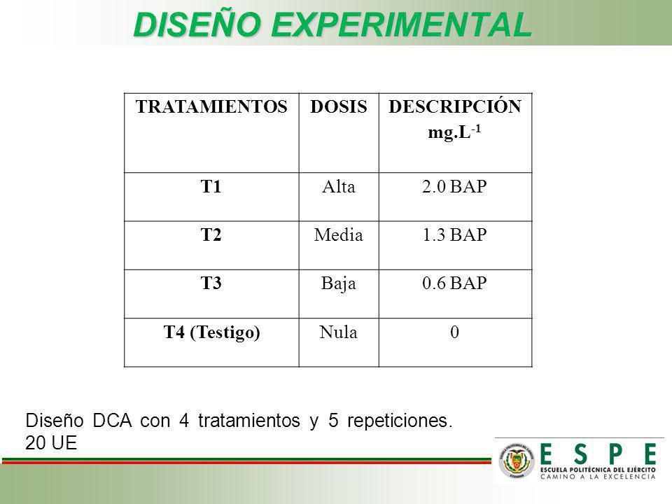 DISEÑO EXPERIMENTAL TRATAMIENTOS DOSIS DESCRIPCIÓN mg.L-1 T1 Alta