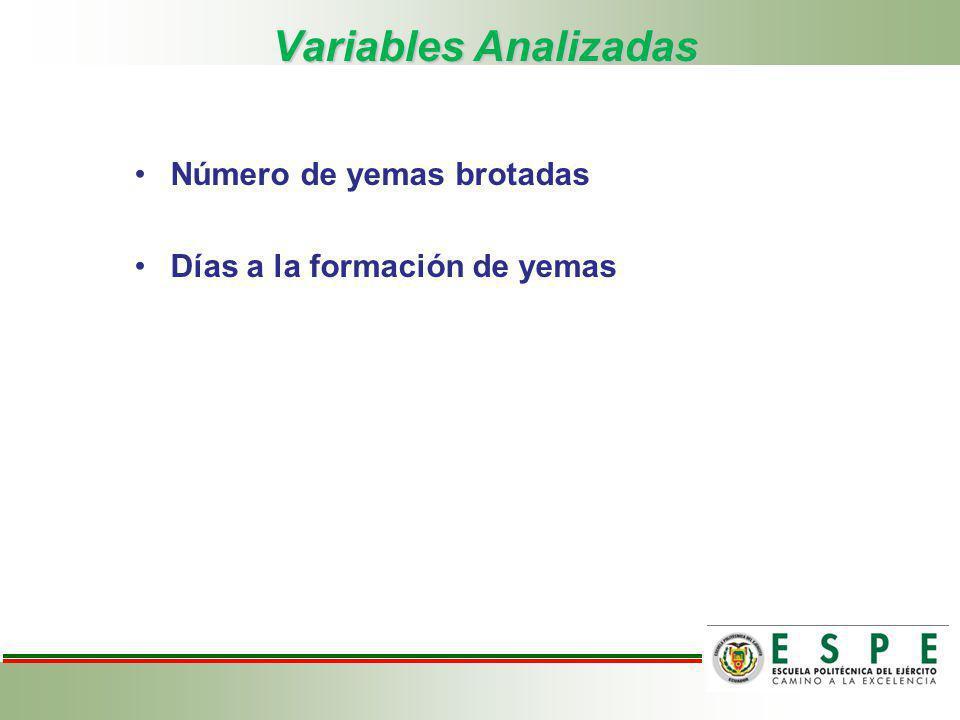 Variables Analizadas Número de yemas brotadas