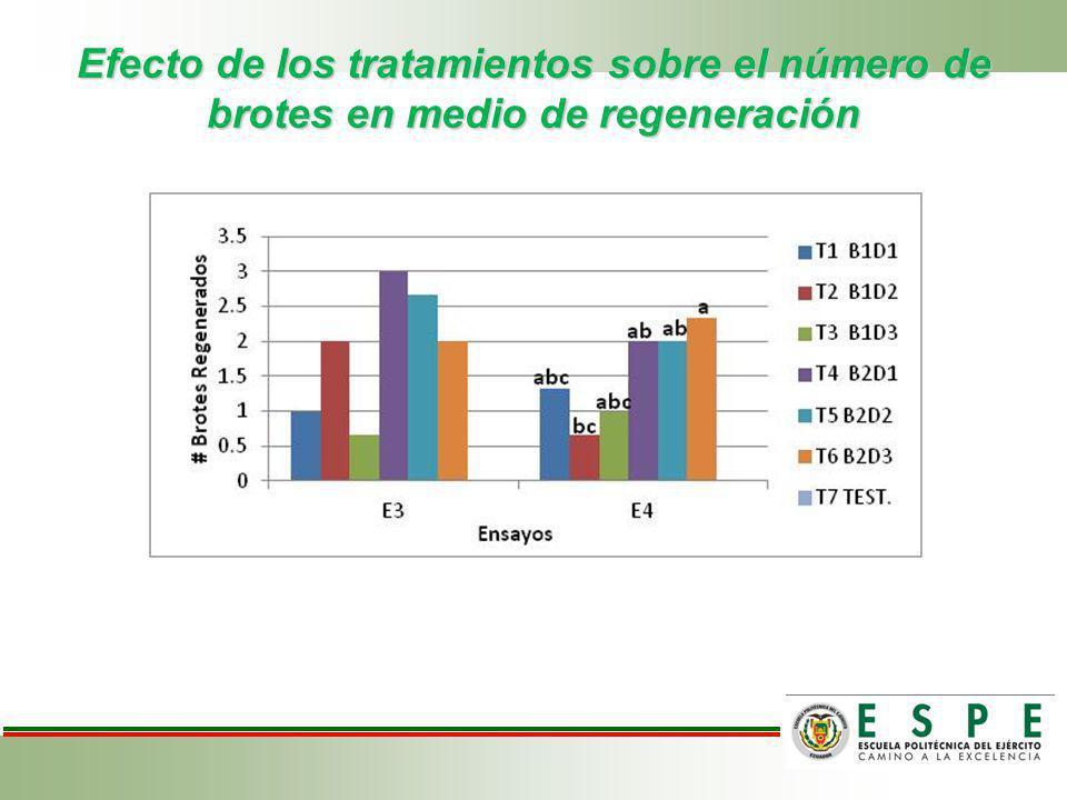 Efecto de los tratamientos sobre el número de brotes en medio de regeneración