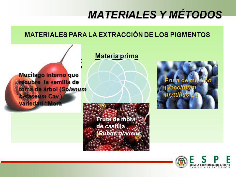 MATERIALES PARA LA EXTRACCIÓN DE LOS PIGMENTOS