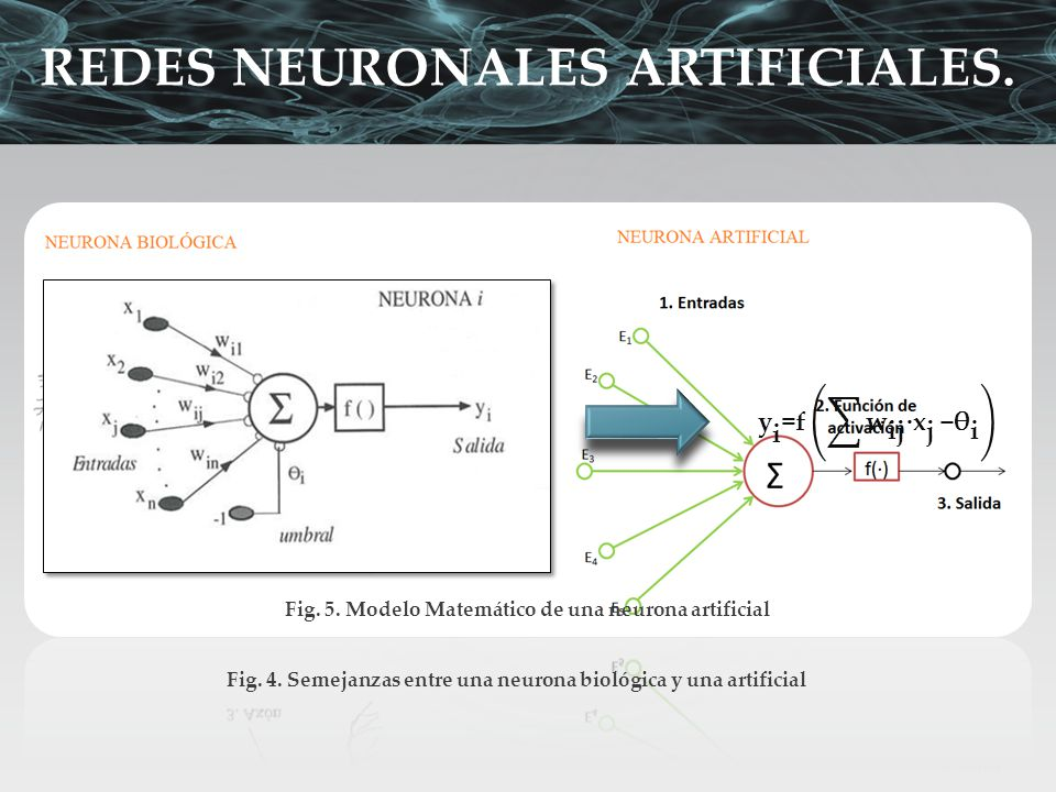 Fig. 5. Modelo Matemático de una neurona artificial