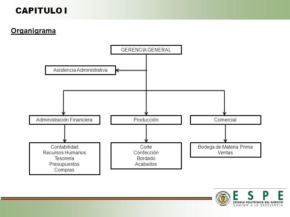 CAPITULO I Organigrama GERENCIA GENERAL Asistencia Administrativa