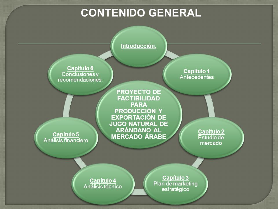 CONTENIDO GENERAL PROYECTO DE FACTIBILIDAD PARA PRODUCCIÓN Y EXPORTACIÓN DE JUGO NATURAL DE ARÁNDANO AL MERCADO ÁRABE.
