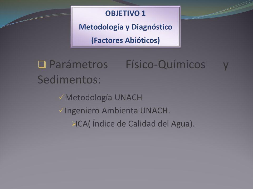Metodología y Diagnóstico