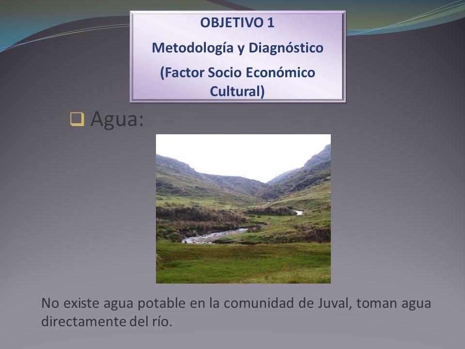 Metodología y Diagnóstico (Factor Socio Económico Cultural)