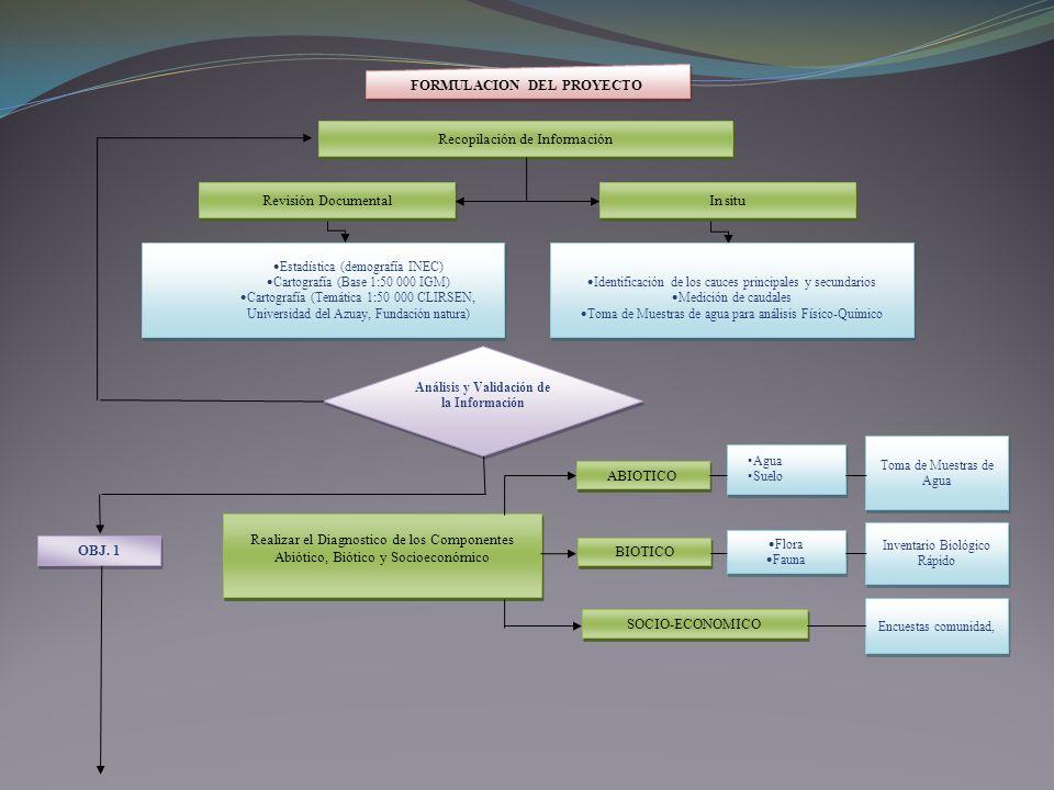 FORMULACION DEL PROYECTO Análisis y Validación de la Información