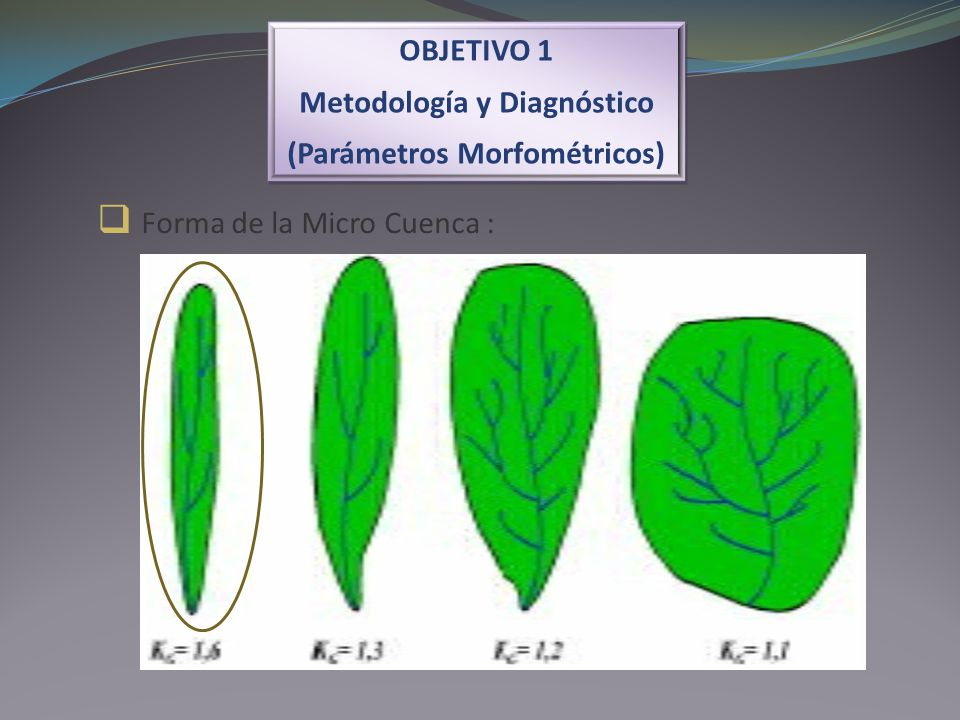 Forma de la Micro Cuenca :