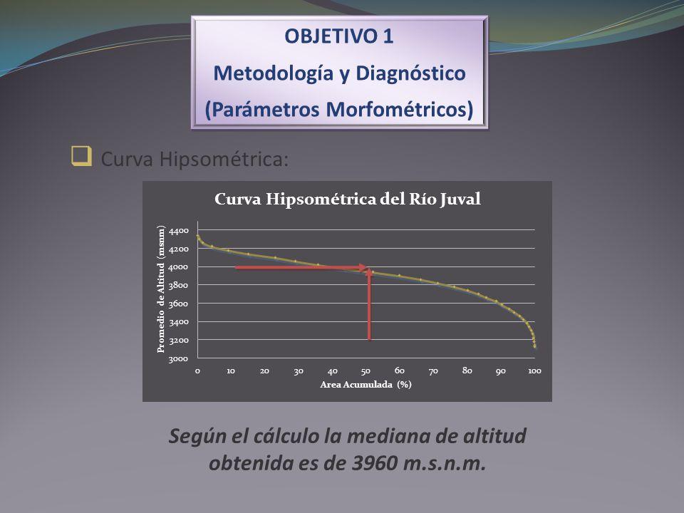 Curva Hipsométrica: OBJETIVO 1 Metodología y Diagnóstico