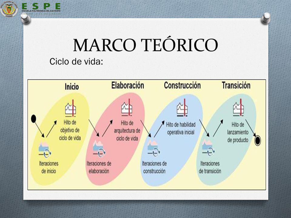 MARCO TEÓRICO Ciclo de vida: