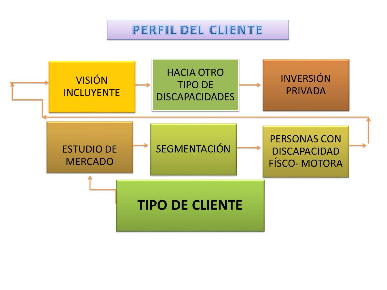 TIPO DE CLIENTE PERFIL DEL CLIENTE VISIÓN INCLUYENTE