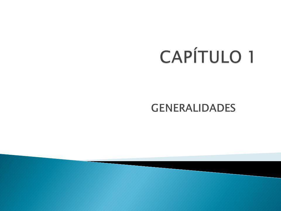 CAPÍTULO 1 GENERALIDADES