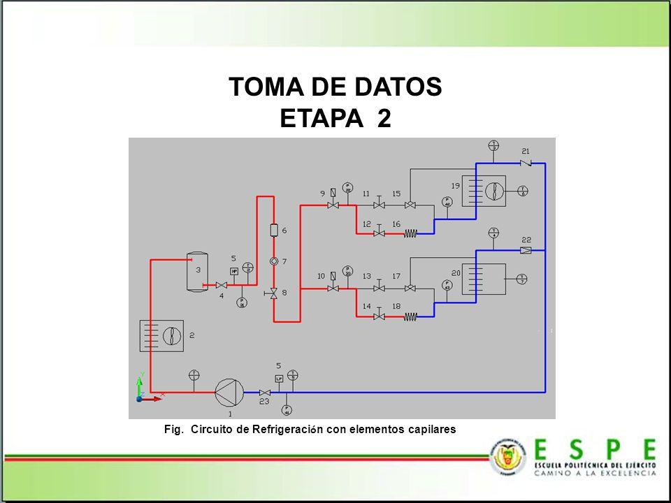 Fig. Circuito de Refrigeración con elementos capilares
