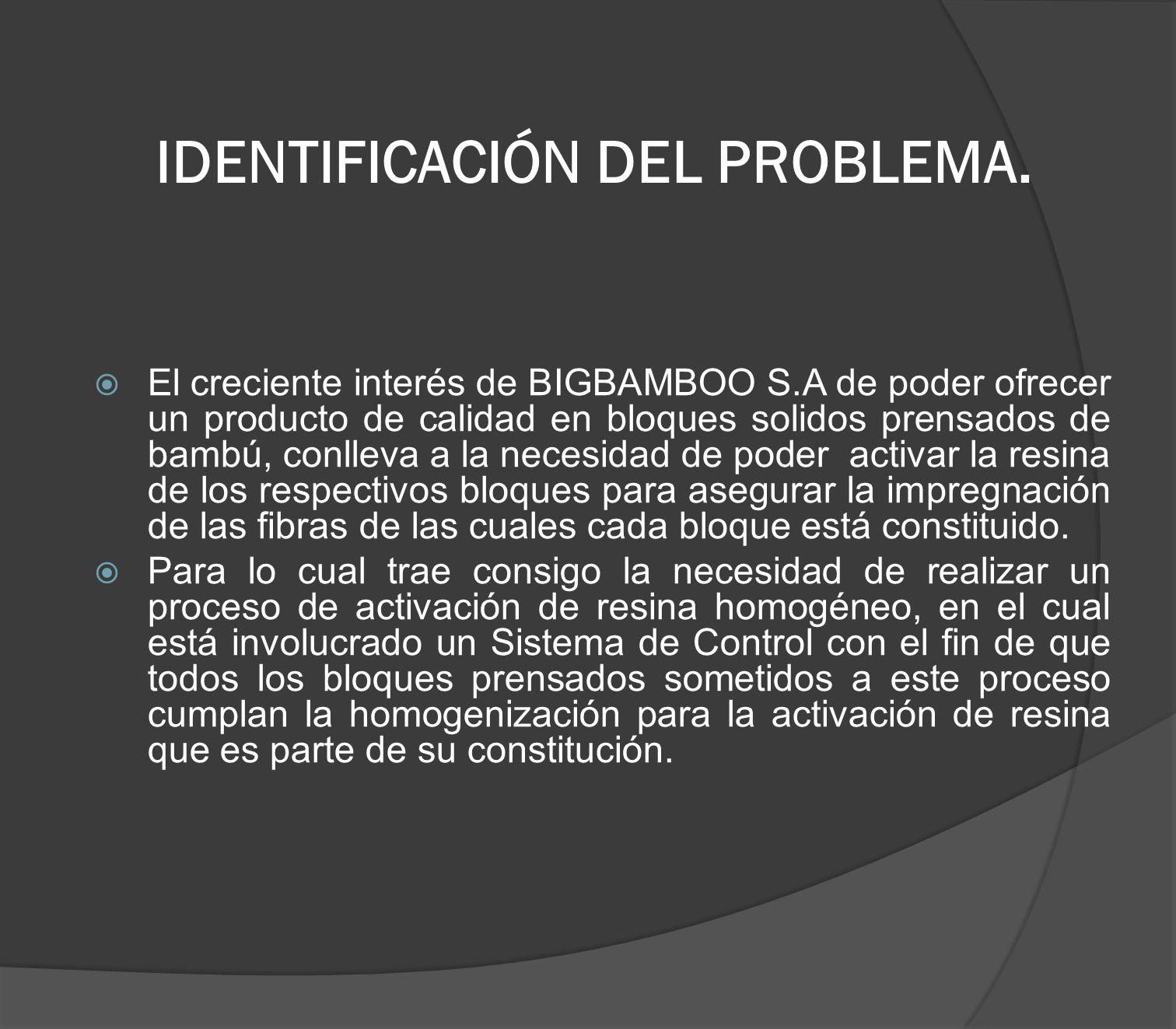 IDENTIFICACIÓN DEL PROBLEMA.