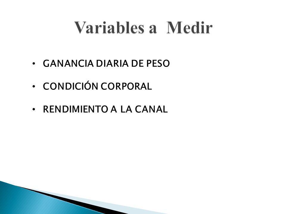 Variables a Medir GANANCIA DIARIA DE PESO CONDICIÓN CORPORAL