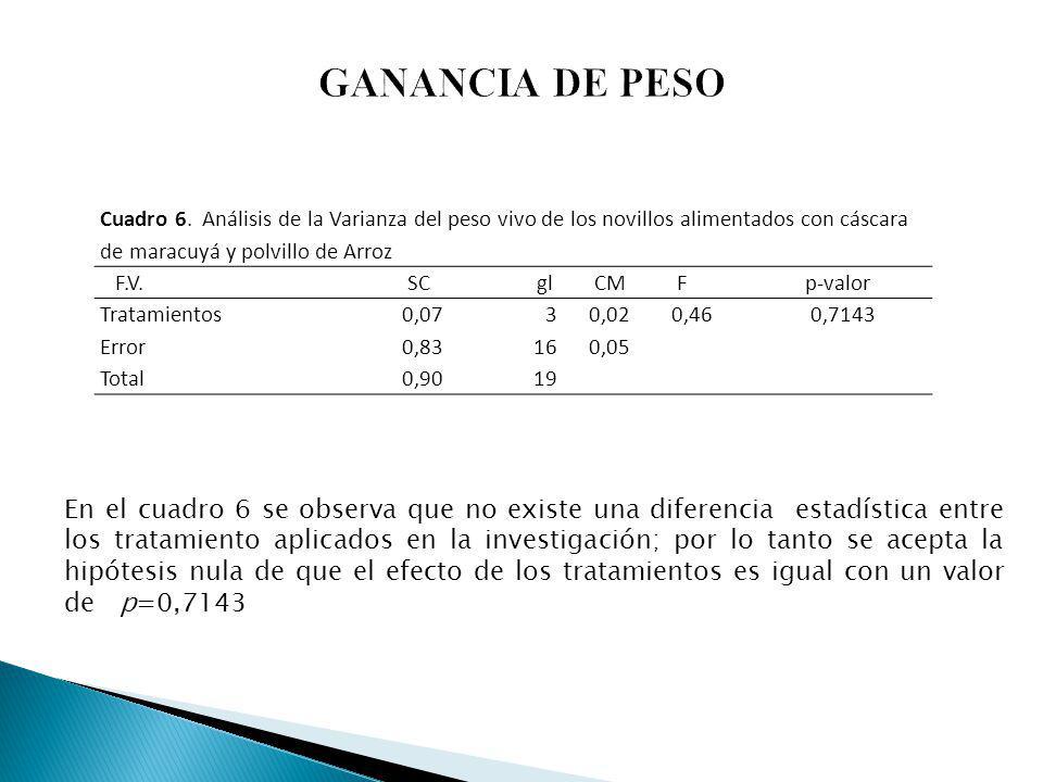 GANANCIA DE PESO Cuadro 6. Análisis de la Varianza del peso vivo de los novillos alimentados con cáscara de maracuyá y polvillo de Arroz