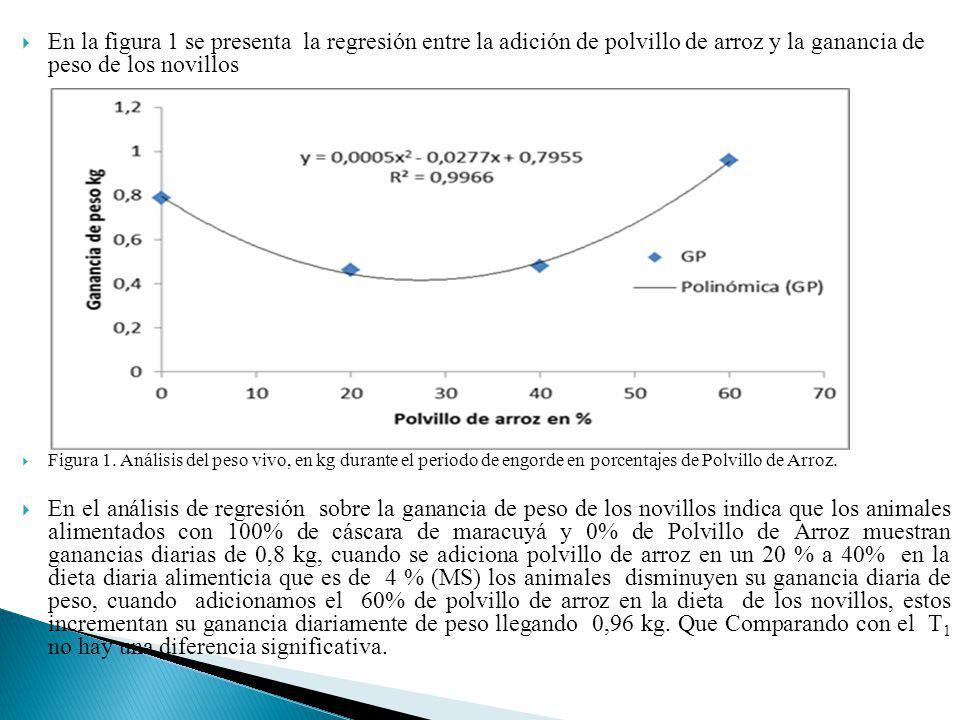 En la figura 1 se presenta la regresión entre la adición de polvillo de arroz y la ganancia de peso de los novillos