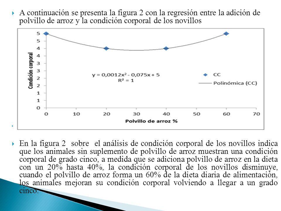A continuación se presenta la figura 2 con la regresión entre la adición de polvillo de arroz y la condición corporal de los novillos