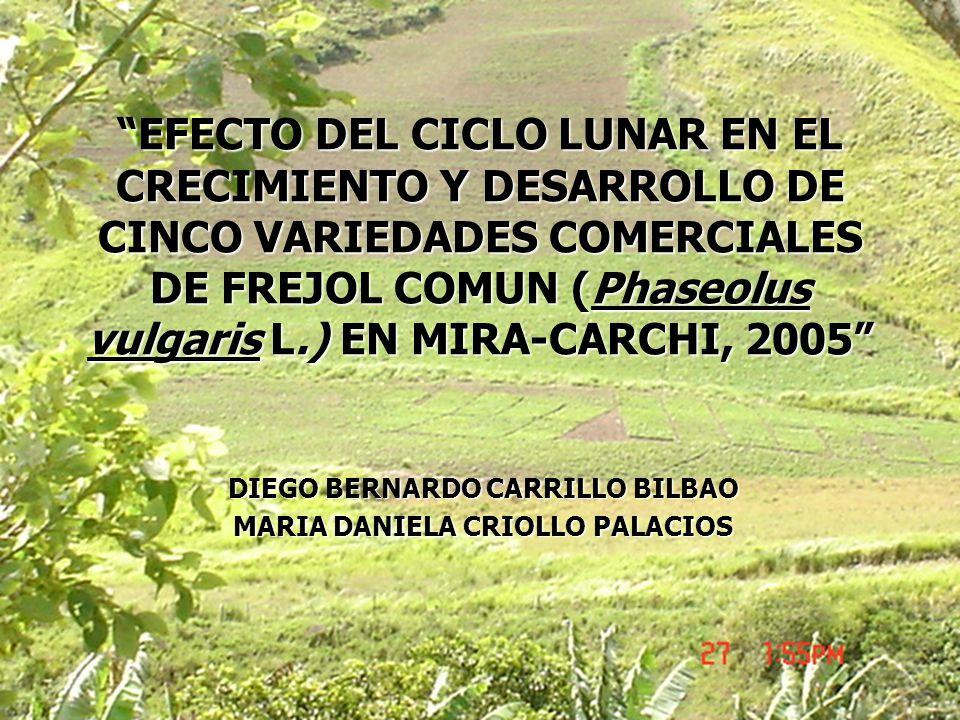 DIEGO BERNARDO CARRILLO BILBAO MARIA DANIELA CRIOLLO PALACIOS