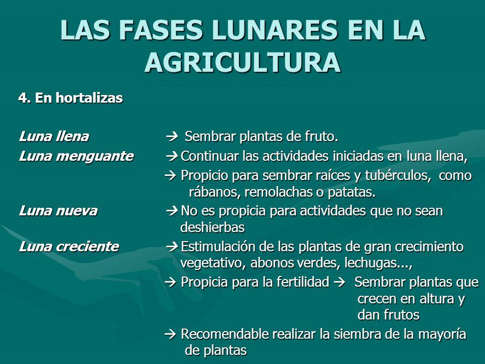 LAS FASES LUNARES EN LA AGRICULTURA