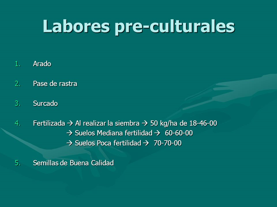 Labores pre-culturales