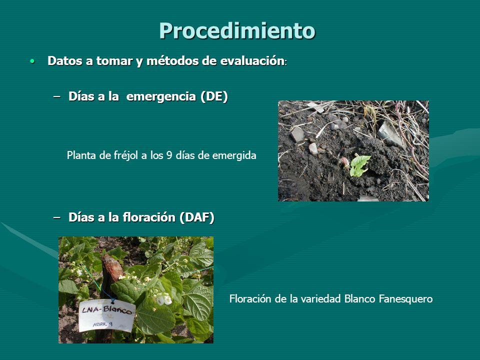 Procedimiento Datos a tomar y métodos de evaluación: