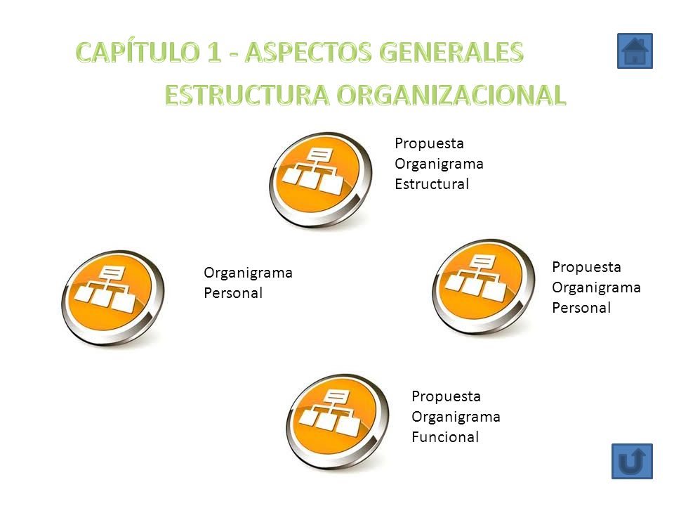 CAPÍTULO 1 - ASPECTOS GENERALES ESTRUCTURA ORGANIZACIONAL