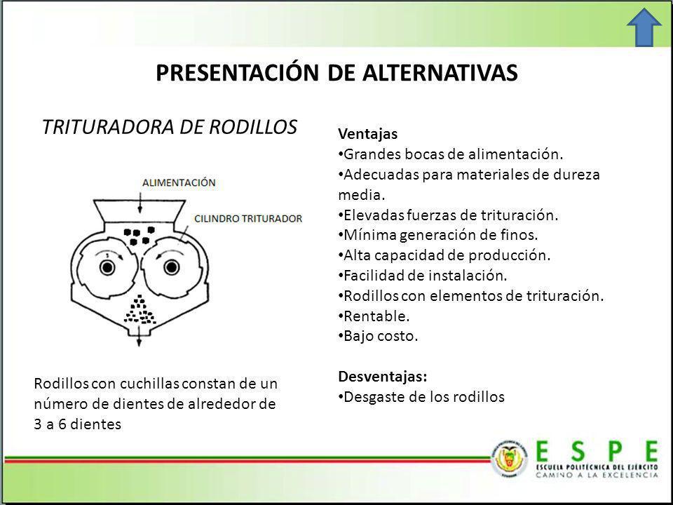 PRESENTACIÓN DE ALTERNATIVAS