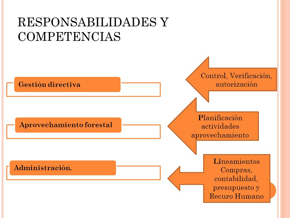 RESPONSABILIDADES Y COMPETENCIAS