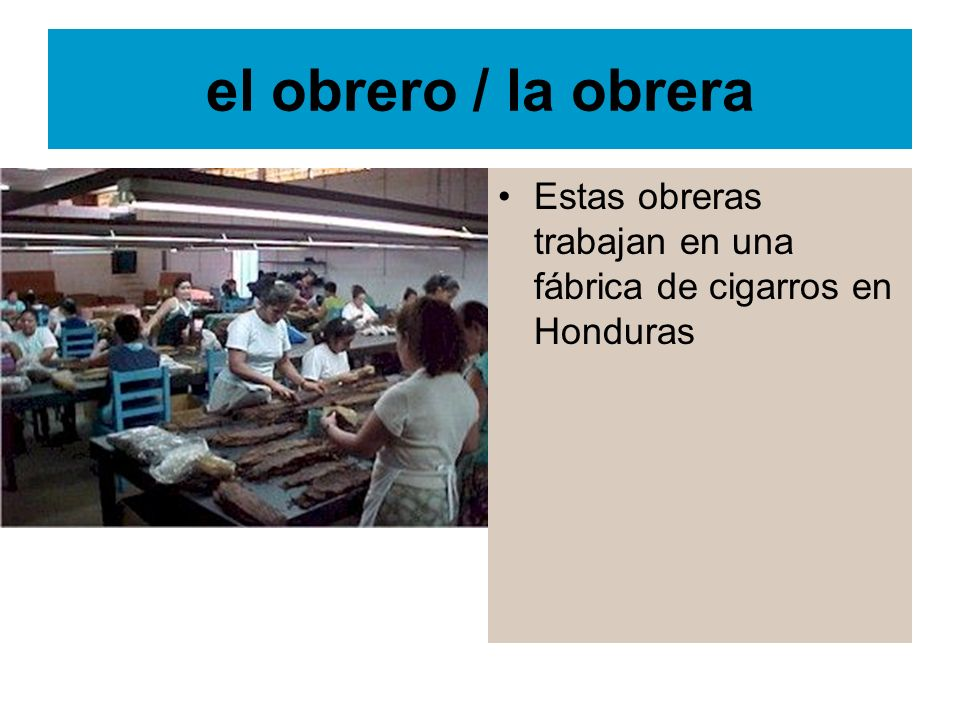 el obrero / la obrera Estas obreras trabajan en una fábrica de cigarros en Honduras
