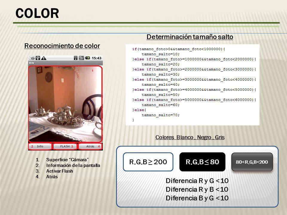 color Determinación tamaño salto Reconocimiento de color
