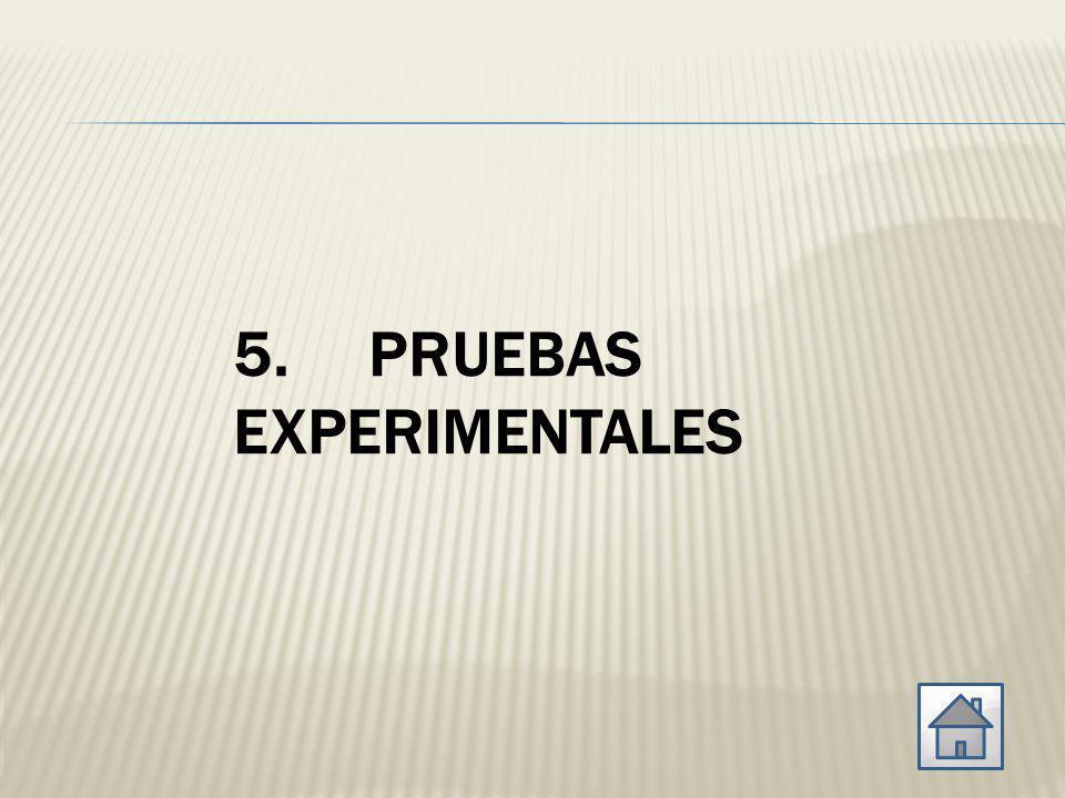 5. PRUEBAS EXPERIMENTALES