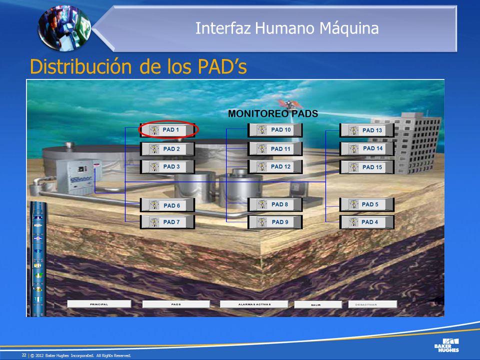 Distribución de los PAD's