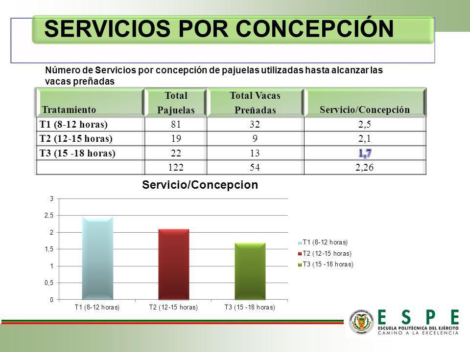 SERVICIOS POR CONCEPCIÓN