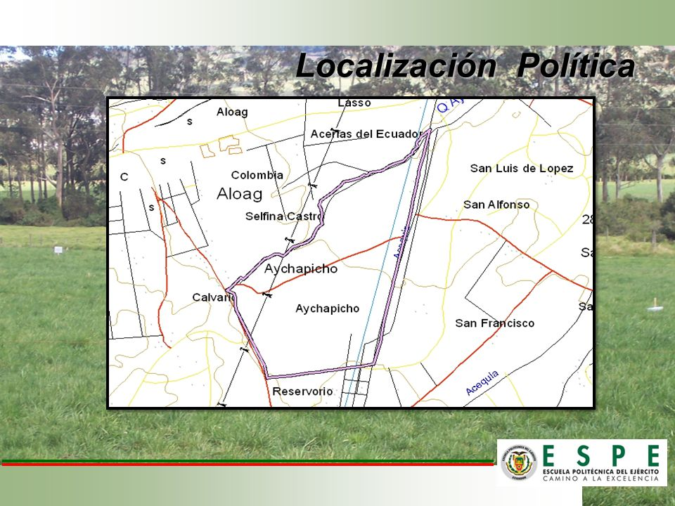Localización Política