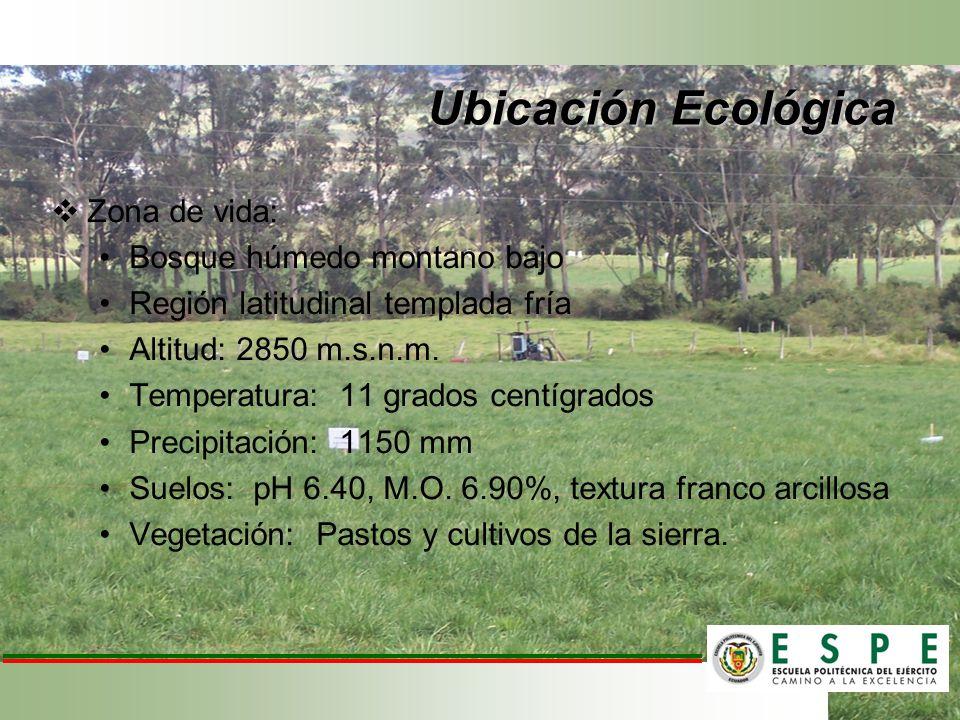 Ubicación Ecológica Zona de vida: Bosque húmedo montano bajo