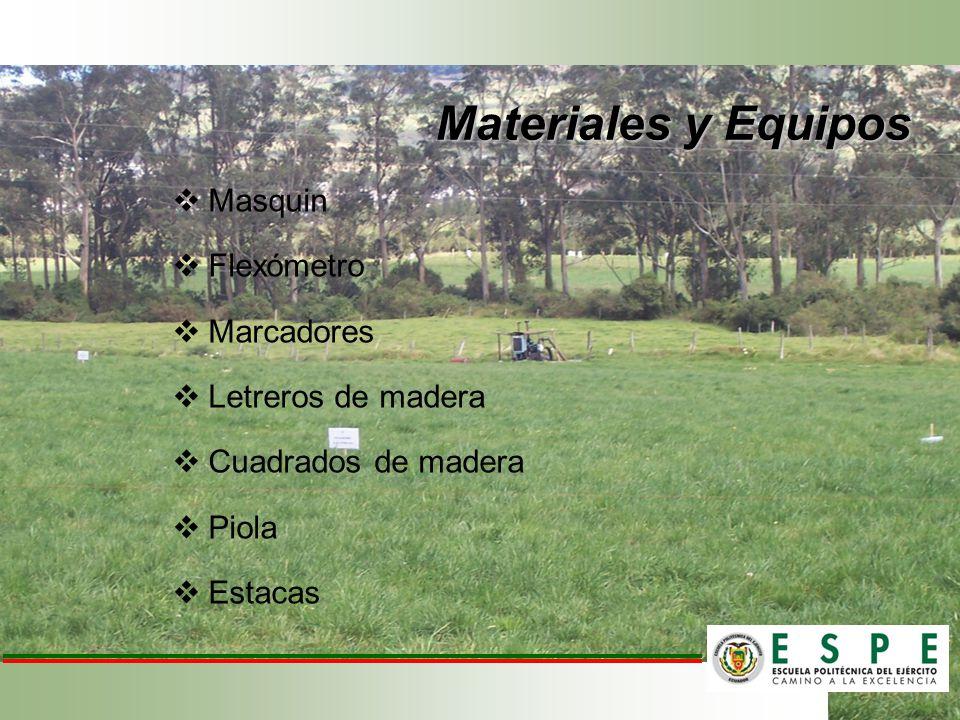 Materiales y Equipos Masquin Flexómetro Marcadores Letreros de madera