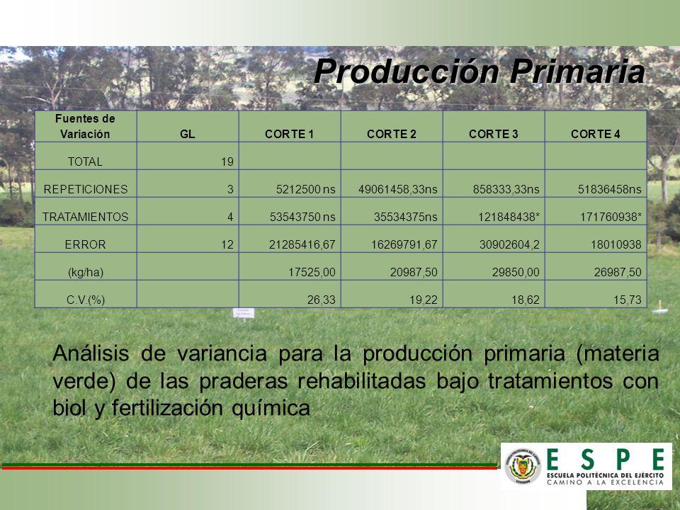 Producción Primaria Fuentes de Variación. GL. CORTE 1. CORTE 2. CORTE 3. CORTE 4. TOTAL. 19.