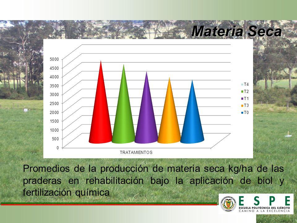 Materia Seca Promedios de la producción de materia seca kg/ha de las praderas en rehabilitación bajo la aplicación de biol y fertilización química.