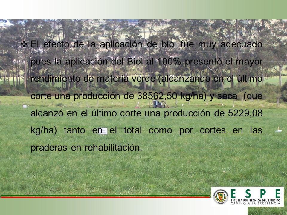 El efecto de la aplicación de biol fue muy adecuado pues la aplicación del Biol al 100% presentó el mayor rendimiento de materia verde (alcanzando en el último corte una producción de 38562,50 kg/ha) y seca (que alcanzó en el último corte una producción de 5229,08 kg/ha) tanto en el total como por cortes en las praderas en rehabilitación.