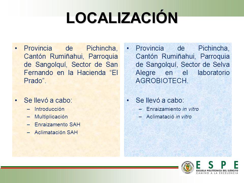 LOCALIZACIÓN Provincia de Pichincha, Cantón Rumiñahui, Parroquia de Sangolquí, Sector de San Fernando en la Hacienda El Prado .