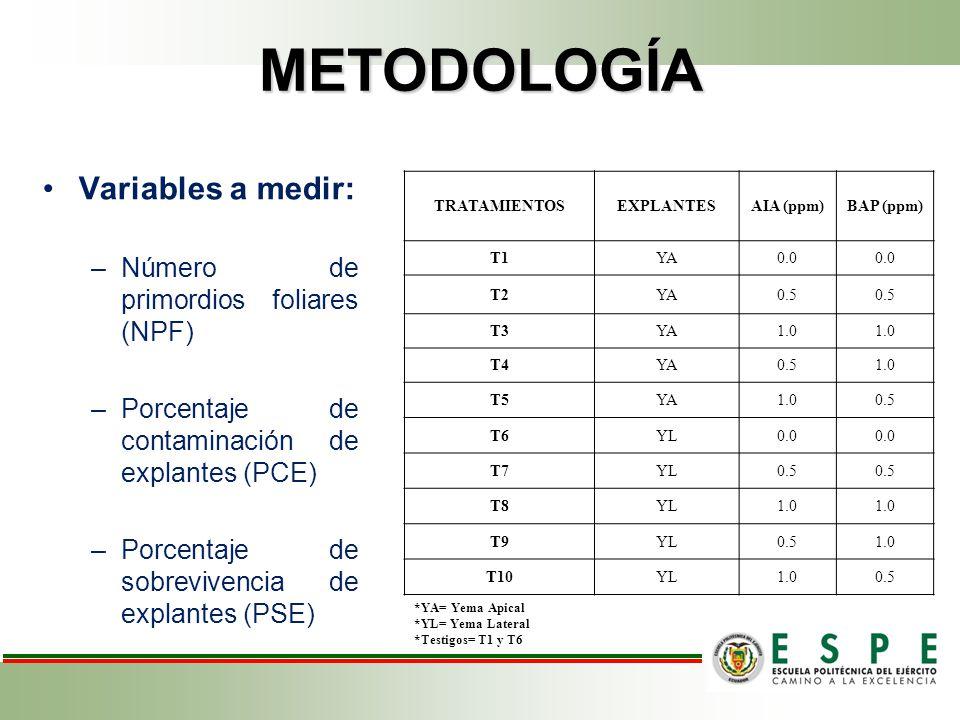METODOLOGÍA Variables a medir: Número de primordios foliares (NPF)