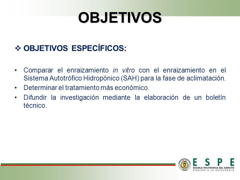 OBJETIVOS OBJETIVOS ESPECÍFICOS: