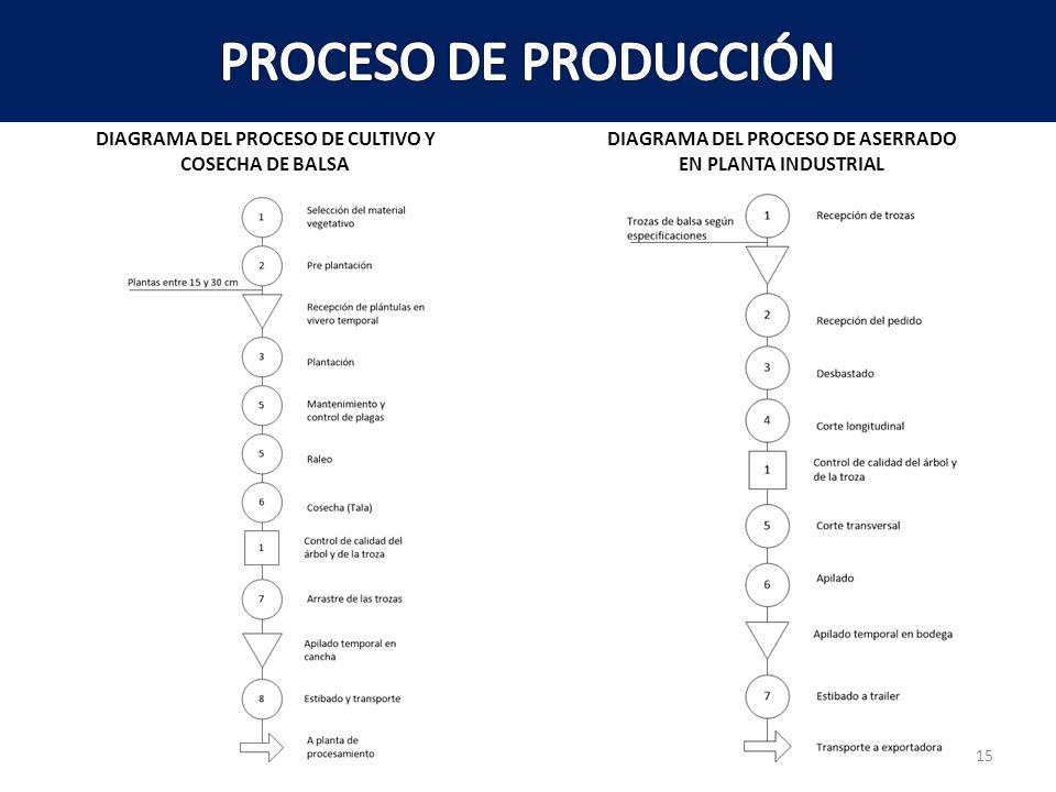DIAGRAMA DEL PROCESO DE CULTIVO Y DIAGRAMA DEL PROCESO DE ASERRADO